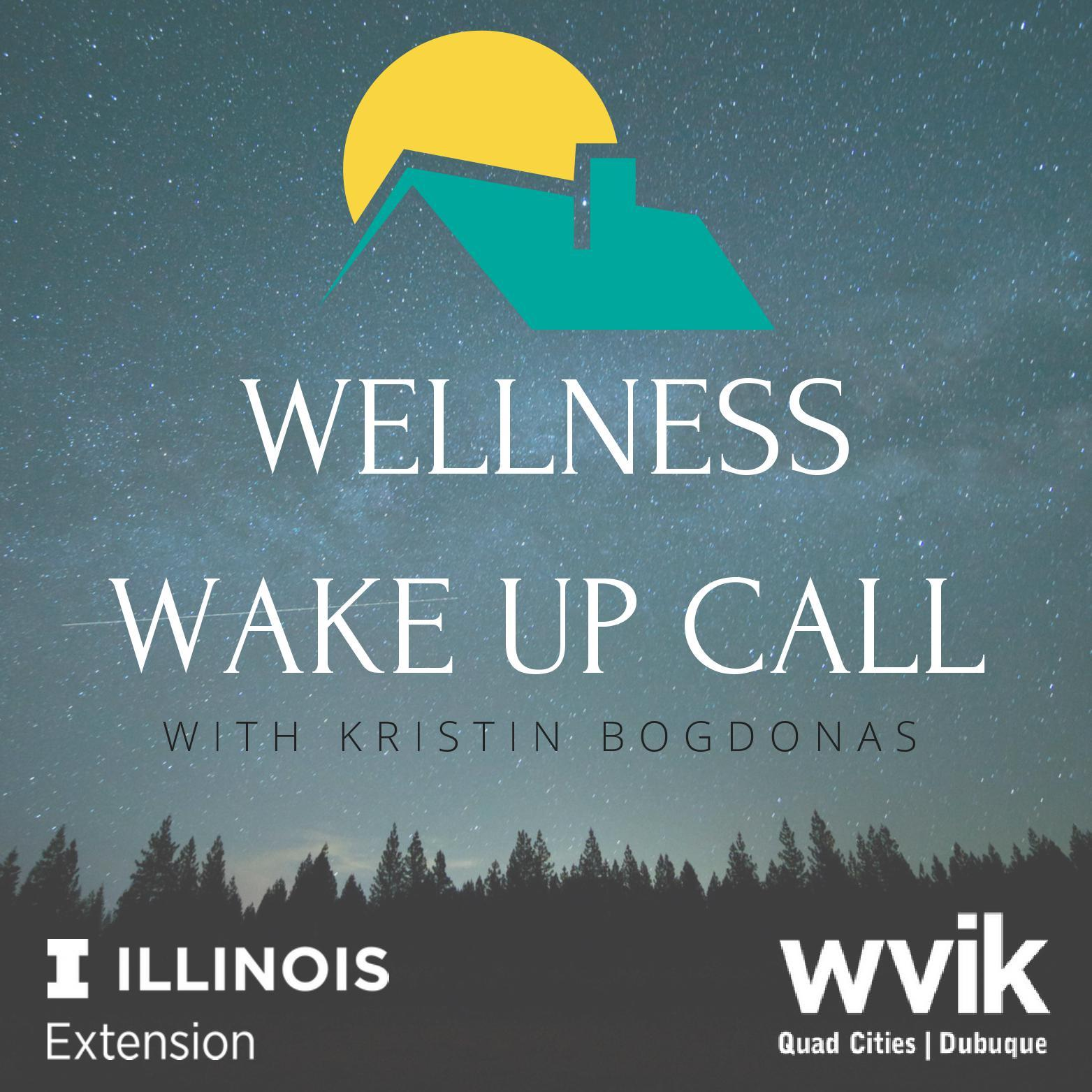 "Image with text ""Wellness Wake Up call"""