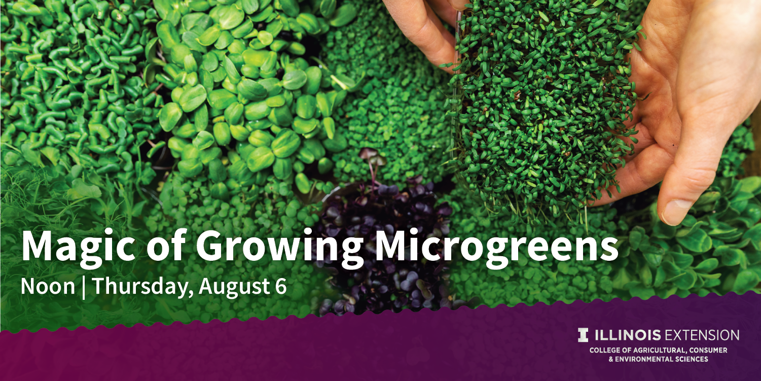 promotion for Microgreens