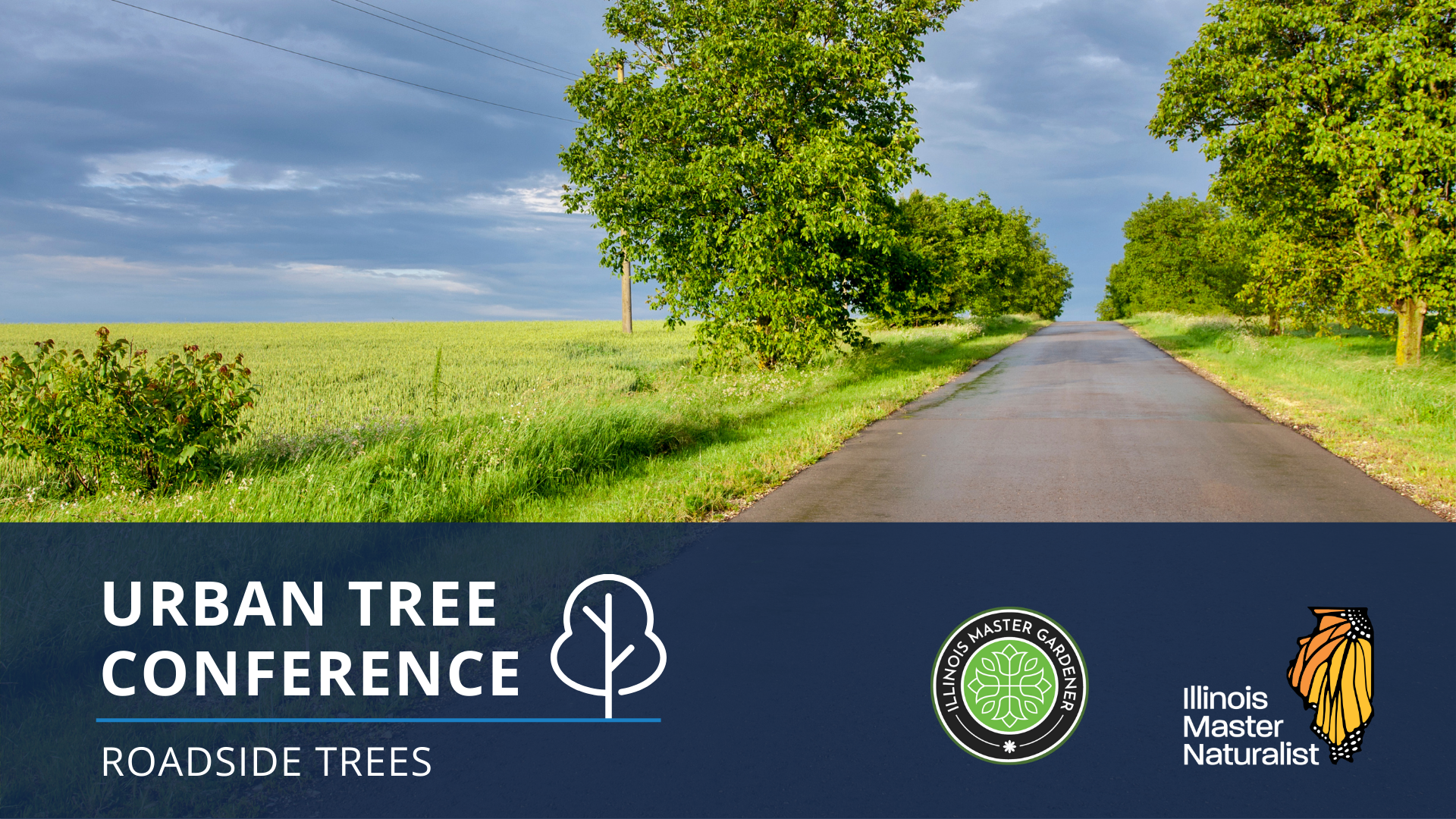 Urban Tree Conference: Best Practices for Growing Roadside Trees