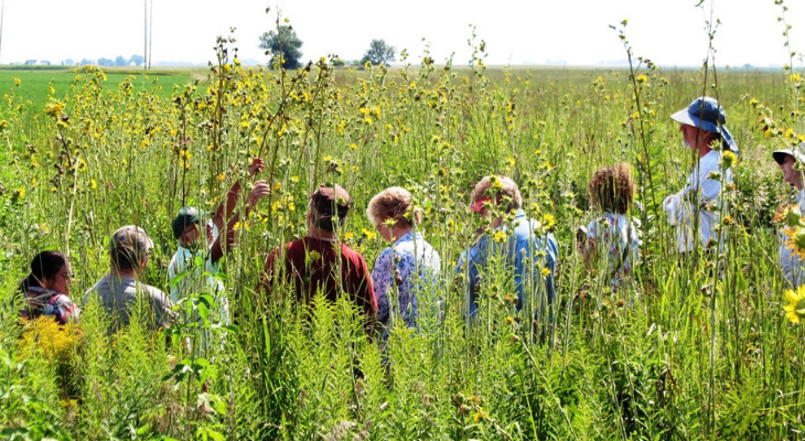 master naturalists stand in a tallgrass prairie