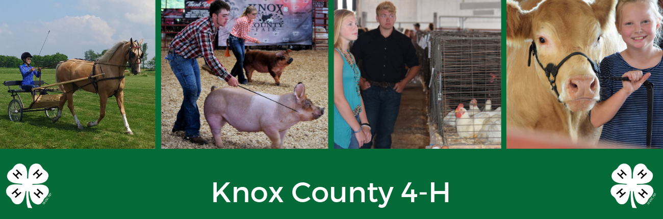 Knox County 4-H Youth