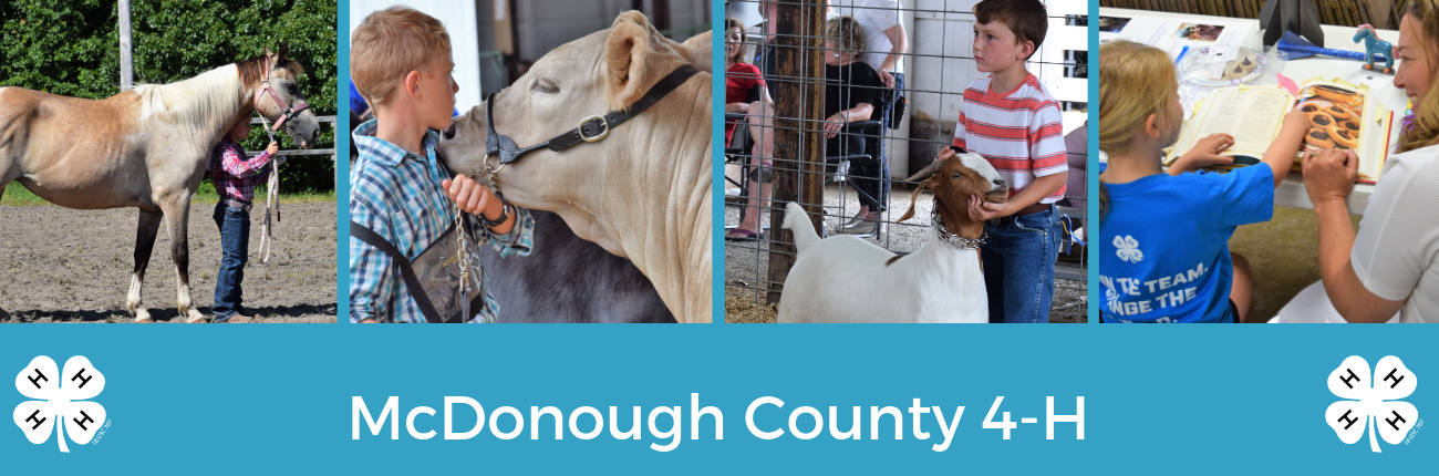 McDonough County 4-H Youth