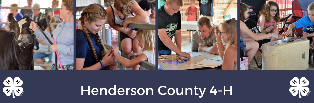 henderson county youth