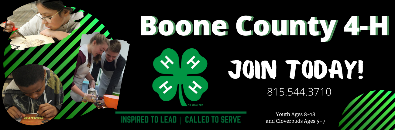Boone County 4-H Banner