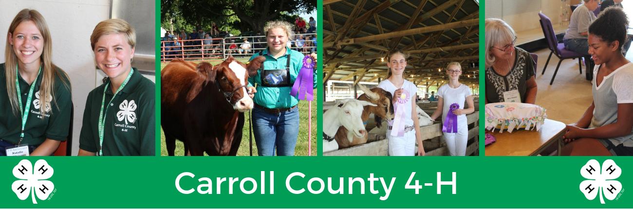 Carroll County 4-H Website Banner