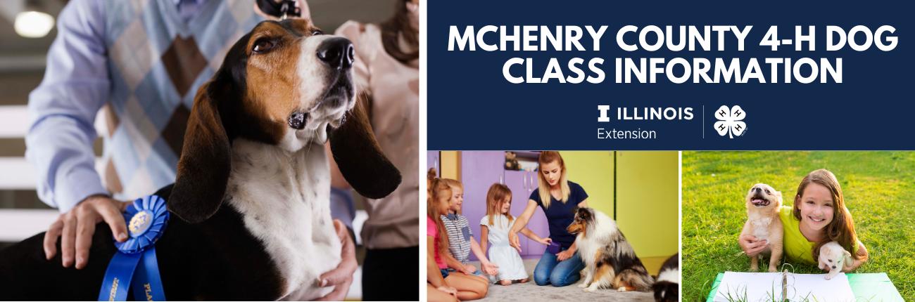 Dog Class Banner