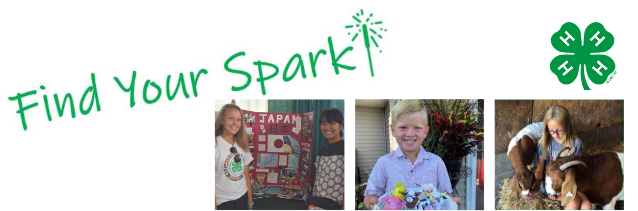 Find Your Spark!