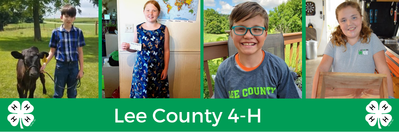 Lee County 4-H Banner
