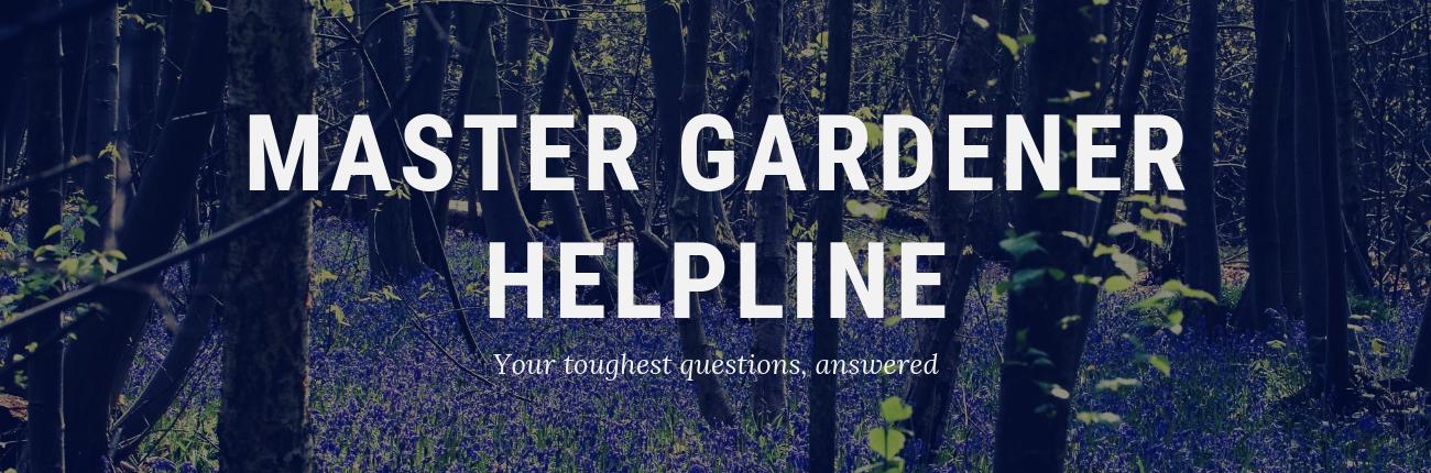 Master Gardener Helpline with woods in the background