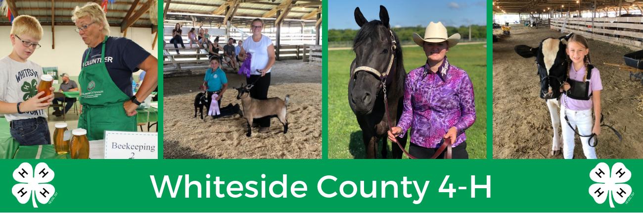 Whiteside County 4-H Banner