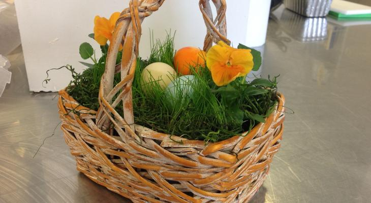 Wicker basket filled with live grass, flowers, and dyed eggs