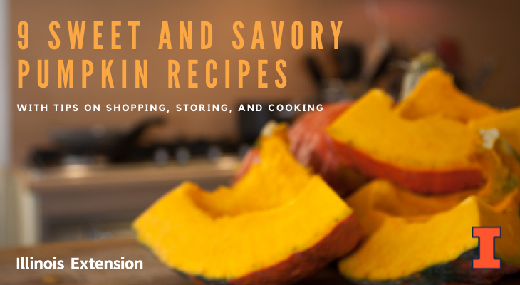 Sweet and savory pumpkin recipes with tips on shopping, storing, and cooking