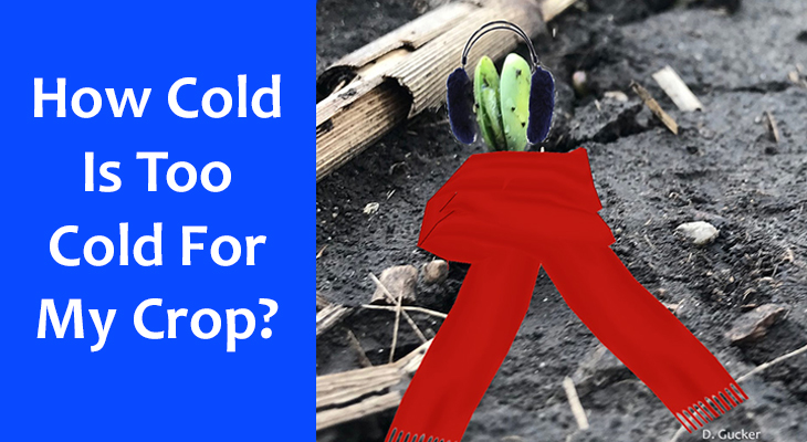 How cold is too cold for my crop?