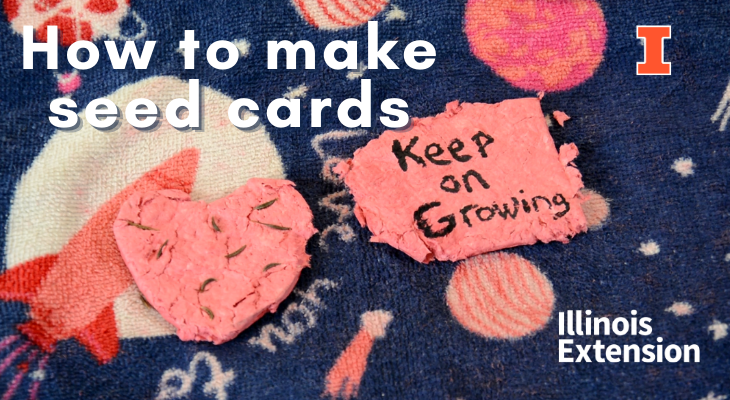 pink seed cards made for Valentine's Day