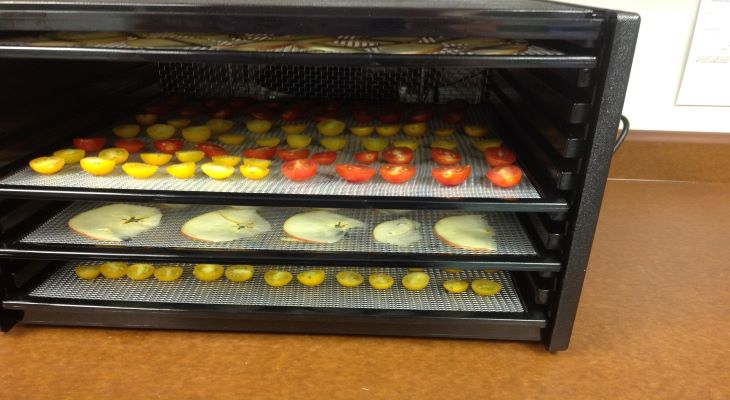 Horizontal dehydrator with trays of drying apples and tomatoes