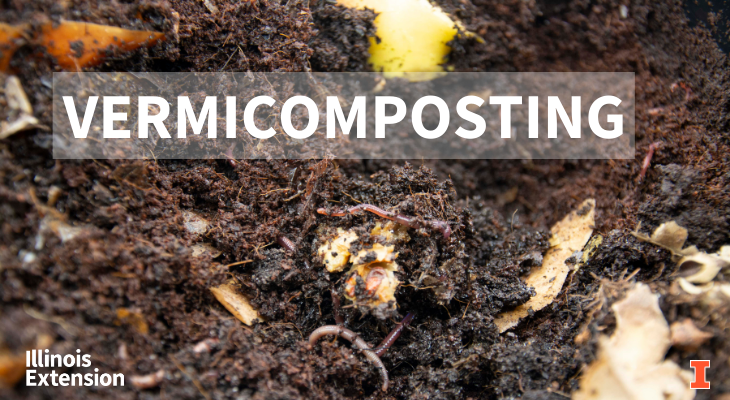 worms feeding on food waste creating compost