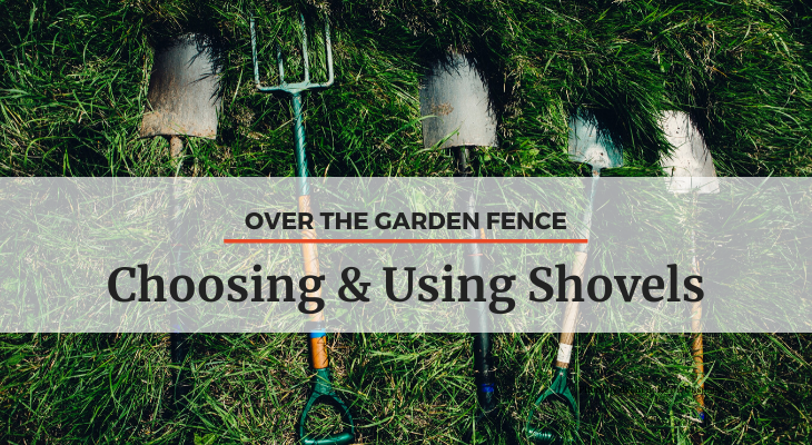 different types of shovels laying in the grass