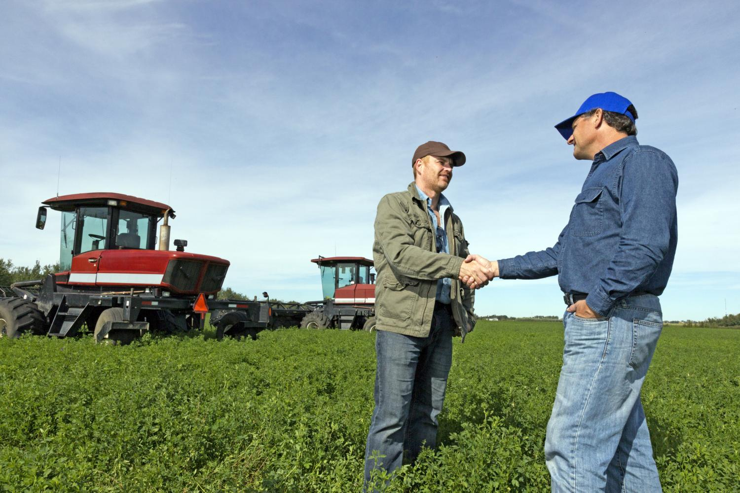 Two farmers shake hands in a field