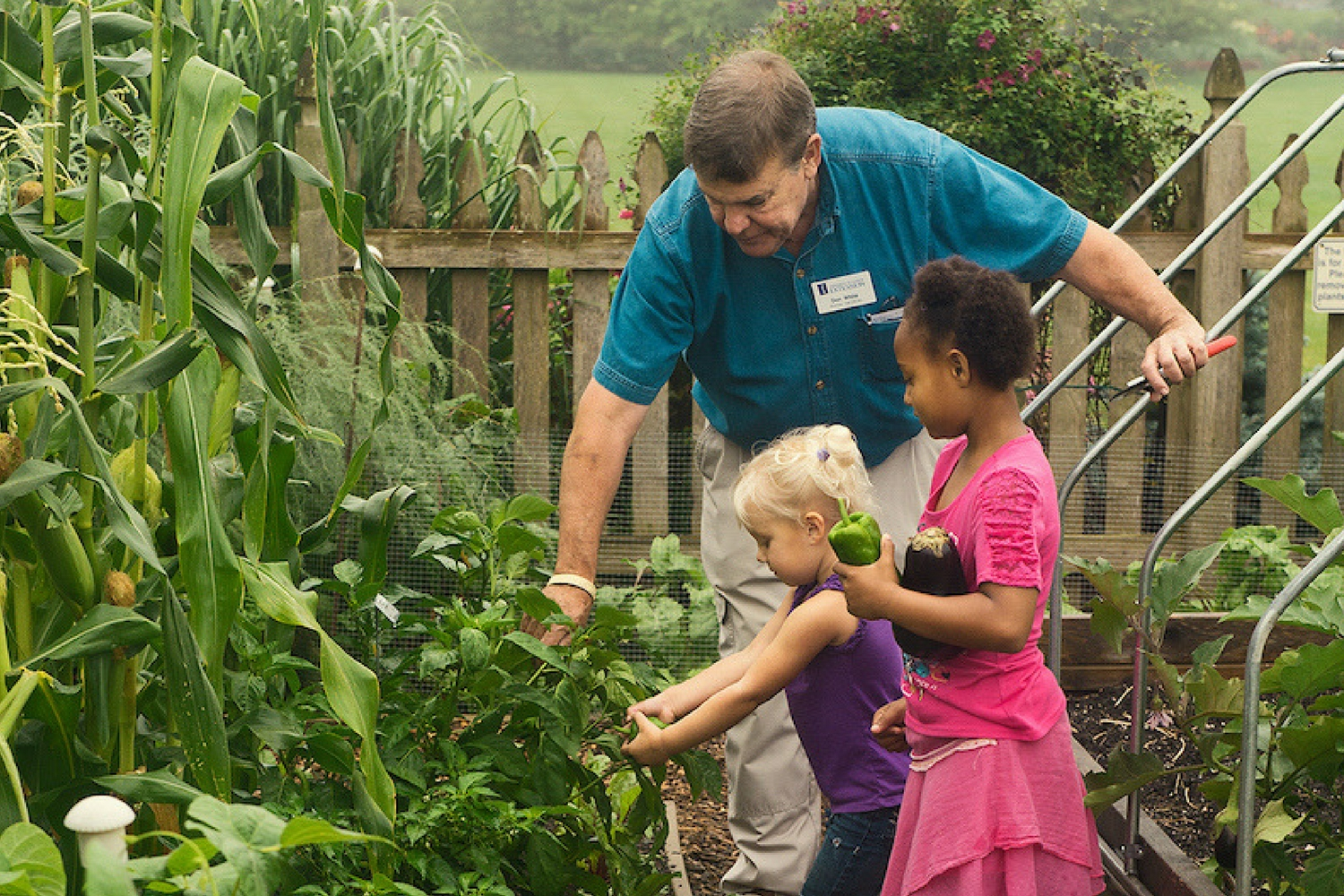 Master Gardener harvesting produce in garden with children