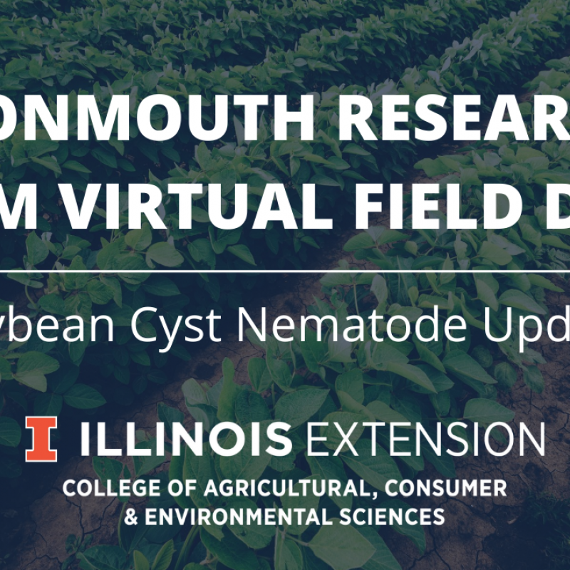Graphic of Soybean Cyst Nematode Update