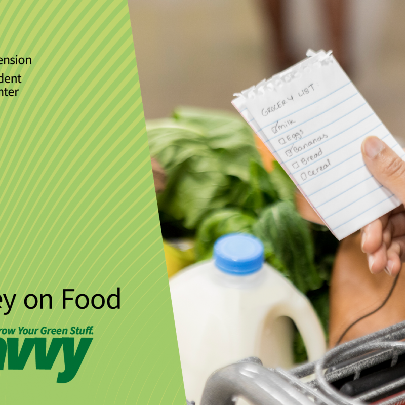Get Savvy webinar Save Monday on Food. Hand holding a grocery list by a shopping cart with milk and green leafy vegetables.