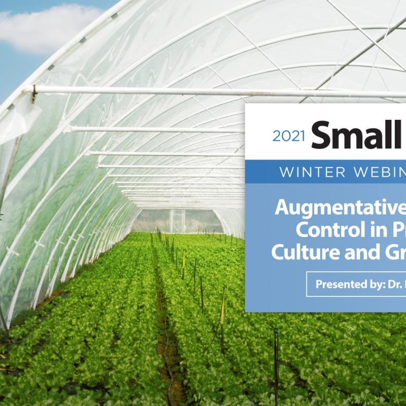 Augmentative Biological Control in Protected Culture and Greenhouses