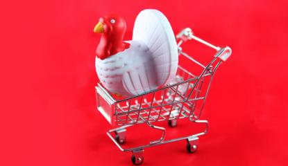 Toy turkey in small shopping cart on red background