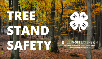 Graphic of tree stand safety text over photo of fall trees