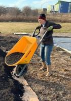 woman with yellow wheelbarrow